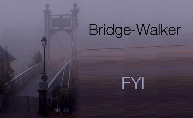 vicki hinze, bridge walker